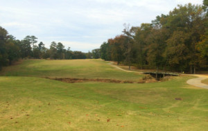 greenville_nc_ironwood_lot_for_sale